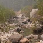 Bushy rocky creek12