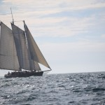 All sails out on America12