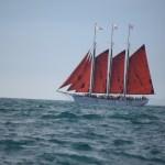 American Pride heads to Dana Point harbor12