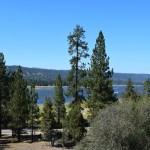Big Bear Lake behind trees12