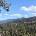 looking-over-a-forest-in-sequoia12