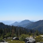 view-at-sequoia-national-park12