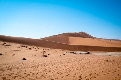 "Dune ""Big Daddy"" at Dead Vlei, Sossusvlei, Namibia"