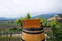 Indomita makes three kinds of wine: Pinot Noir, Sauvignon Blanc, and Chardonnay