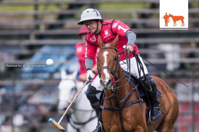 diegocavanaghtalkshorses-77-2016-8-21G