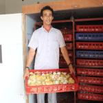 Vu Van Anh World Poultry Foundation