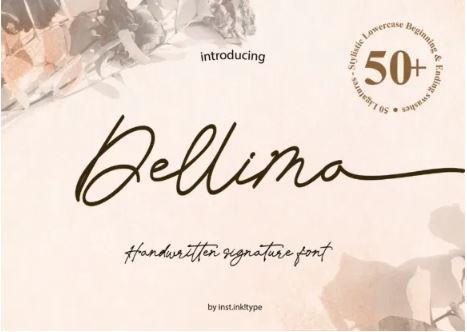Dellima Signature Handwritten Font