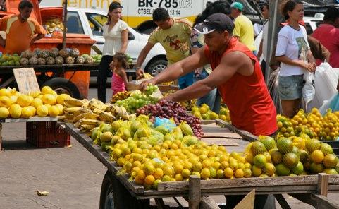 Belem Amazona Fruitcart