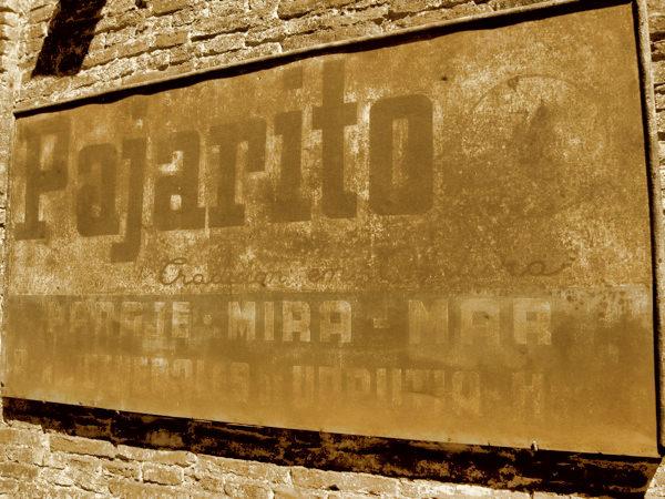 Campo Pajarito
