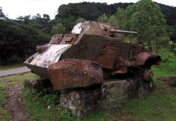 Selva Negra Tank