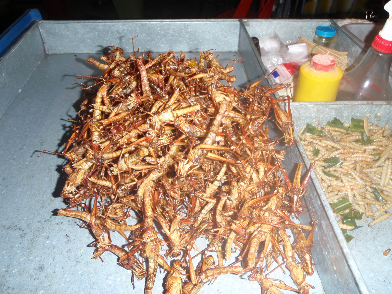 Hungry? Deep fried insects