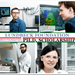 lundbeckfonden-phd-scholarships