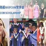 MOFCOM-Китай-Scholarship