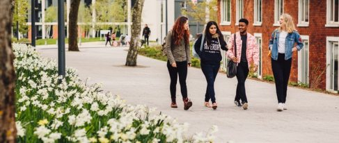 university-warwick-albukhary-scholarship
