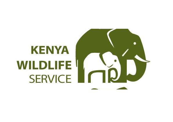 Kenya Wildlife Service Recruitment 2021-2022 | APPLY