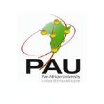 pan-african-university-scholarships