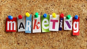 Best-business-marketing-schools