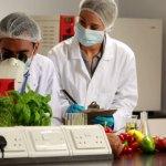 food-science-world-school-program-degree