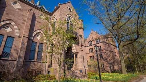 Yale University Acceptance Rate in 2020   Admission Requirements