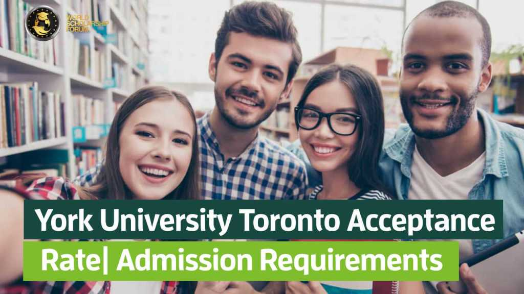 York University Toronto Acceptance Rate In 2020 | Admission Requirements