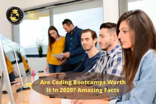 Are Coding Bootcamps Worth It in 2020? Amazing Facts