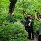 Become A Observant Naturalist With These Tips