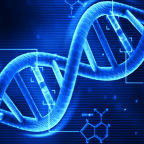 Things You Should Know About Genetics