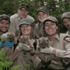 Wildlife Biologists' Importance In Society