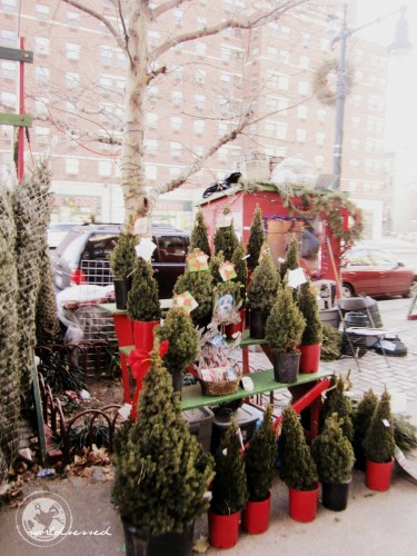Christmas in Manhattan21