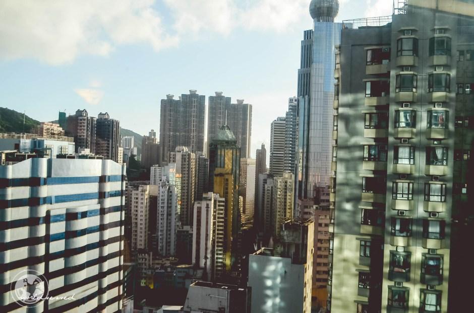 Honkong Tag1-6