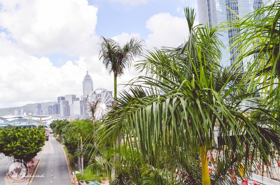 Honkong Tag2-51