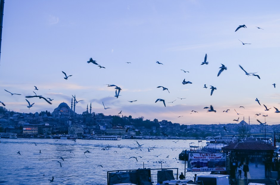 Istanbul T1-44