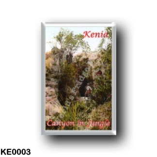 KE0003 Africa - Kenya - Canyon in Jungle