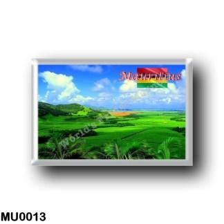 MU0013 Africa - Mauritius - Plantation of Sugarcane