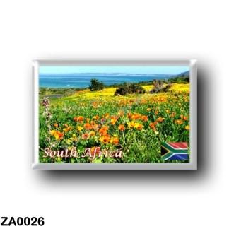 ZA0026 Africa - South Africa - Weskus Nasionale Park