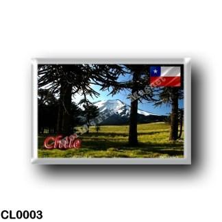 CL0003 America - Chile - Araucarias - Monumento Natural