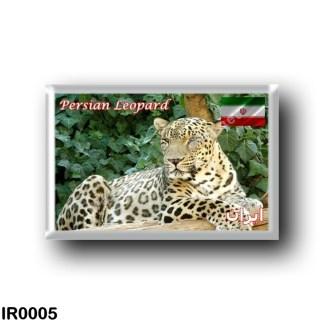 IR0005 Asia - Iran - Persian Leopard
