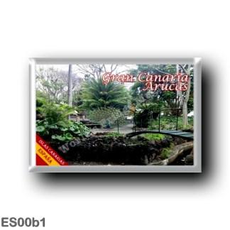 ES00b1 Europe - Spain - Canary Islands - Gran Canaria - Arucas - Botanical Garden
