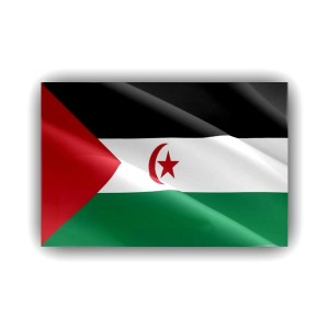 Western Sahara - flag