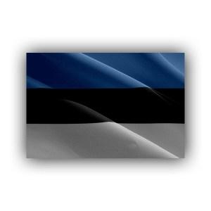 Europe - Estonia - flag - waving