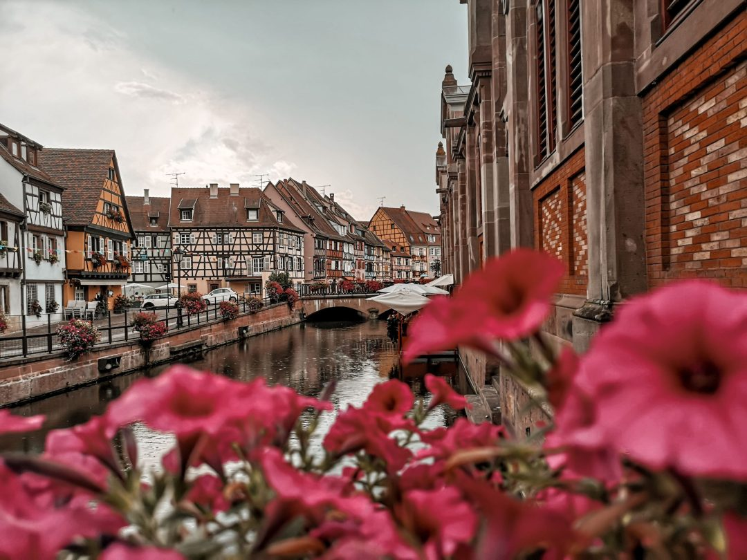 201908-colmar-france-old-town-flowers