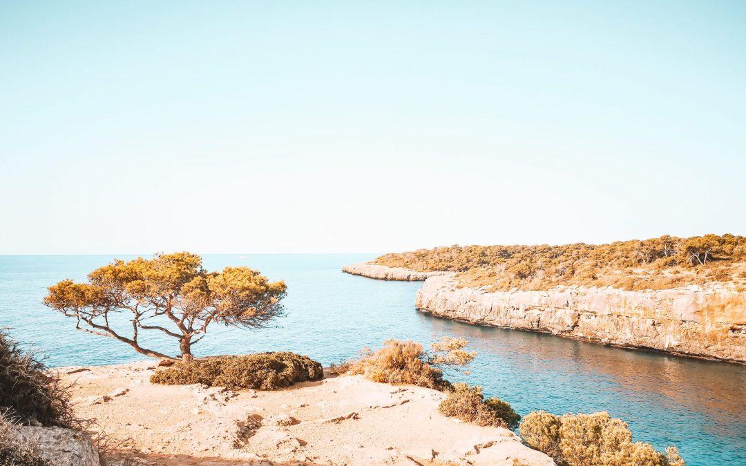 Mallorca: Tipps für die Party-Insel & Orte, die sich lohnen