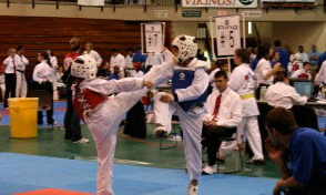 Dispatching an opponent with a face kick at the AAU Florida State Taekwondo Championships - age 11