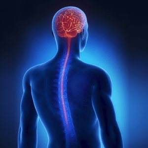 Group logo of Neurosurgery and Spine Surgery
