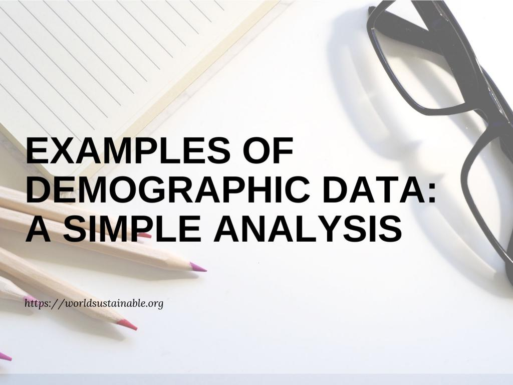 examples-of-the-demographic-data