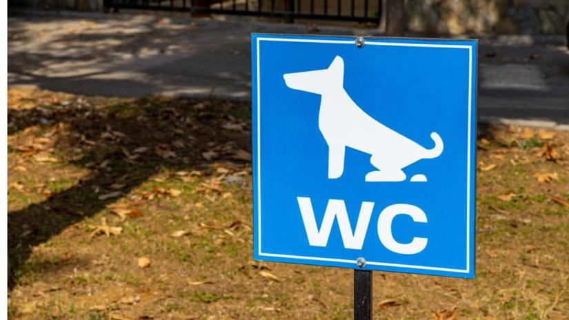 special-place-sign-for-dog's-poop