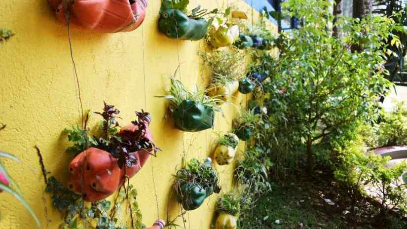 find-a-suitable-container-for-your-garden