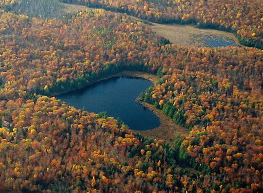 Heart Lake - Ompah - Canada