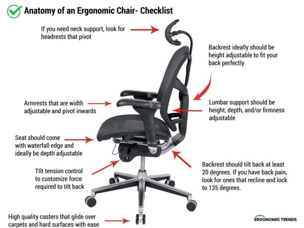 anatomy of an ergonomic office chair