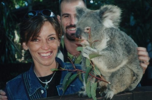 Australia koala (500x327)